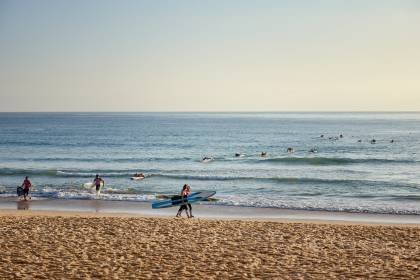 Early morning Surfing - Manly Australia